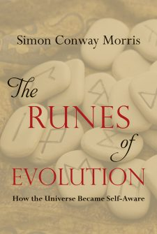 The Runes of Evolution, book published by Templeton Press
